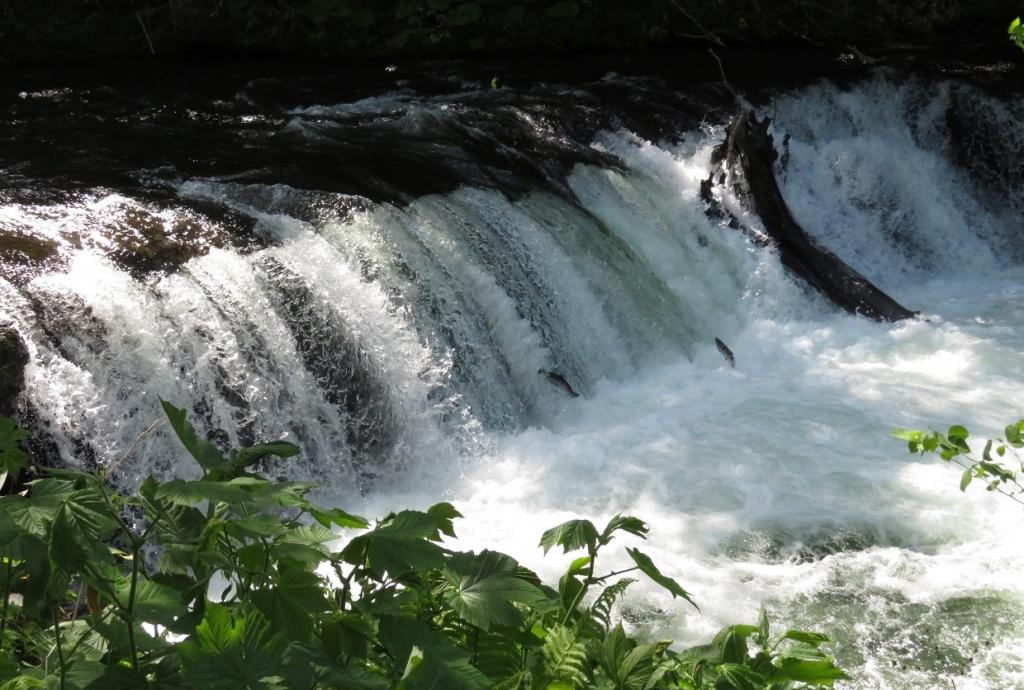水しぶきをあげて段々に流れる渓流