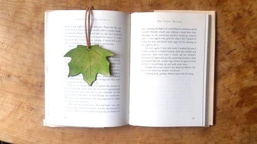 カエデの葉が挟まれた見開きの英書