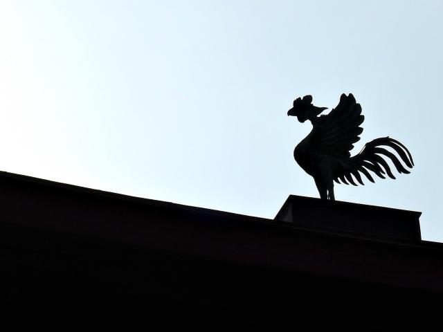 屋根の上の鳳凰のシルエット