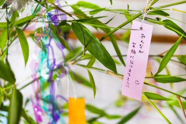 笹に飾り付けた願い事の短冊
