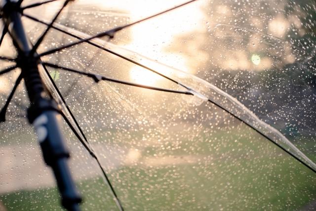夕日が映し出されたビニル傘