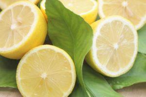 半分にカットされたレモンとその葉