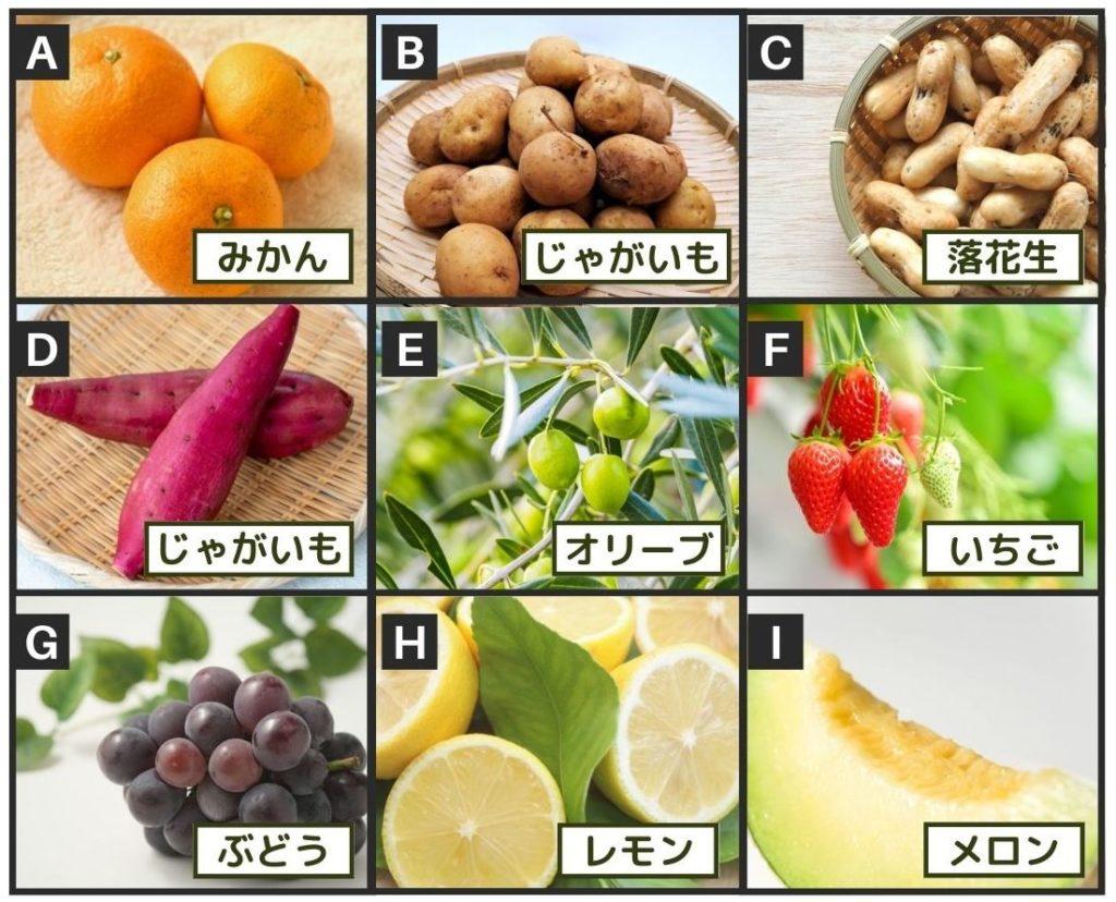 各作物の収穫量1位の都道府県はどこ?